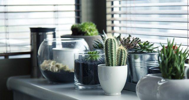 Organising Your Bathroom: Step By Step